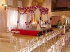 wedding-canopy-6